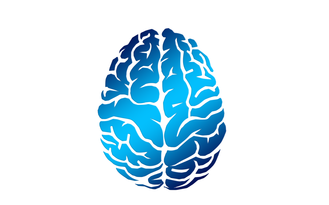¿Cómo puede ayudar el coronavirus a desarrollar el cerebro de mi hijo?